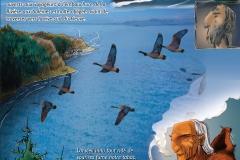 domagaya---vol2-image-1_4442159754_o